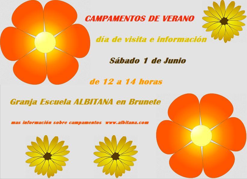 Día de Visita e Información (campamentos Albitana en español y bilingüe inglés-español) Brunete (Madrid)