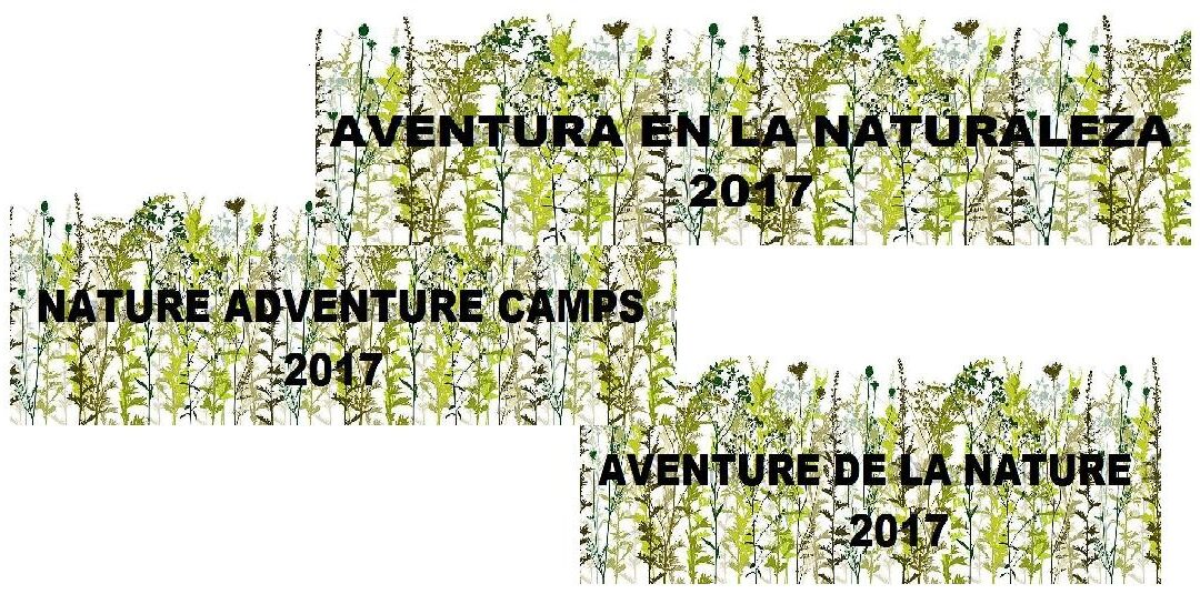 Inscripción campamentos – summer camps ALBITANA 2017