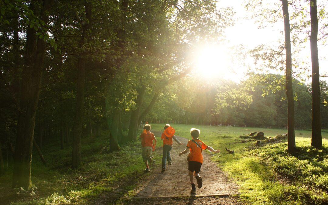 10 razones para estar en contacto con la naturaleza
