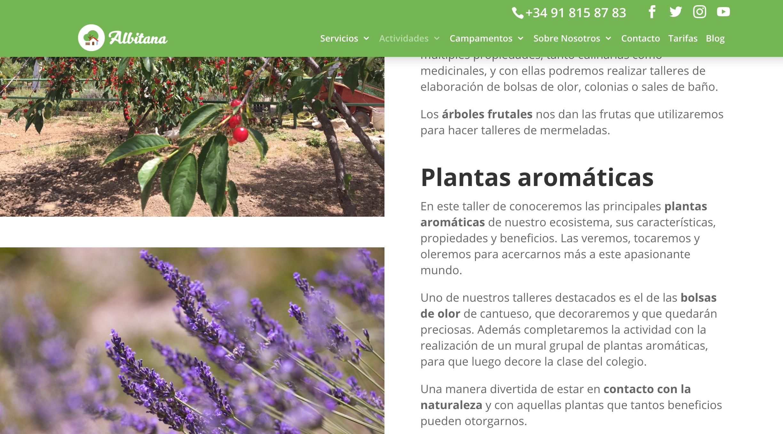 plantas aromáticas nueva web albitana