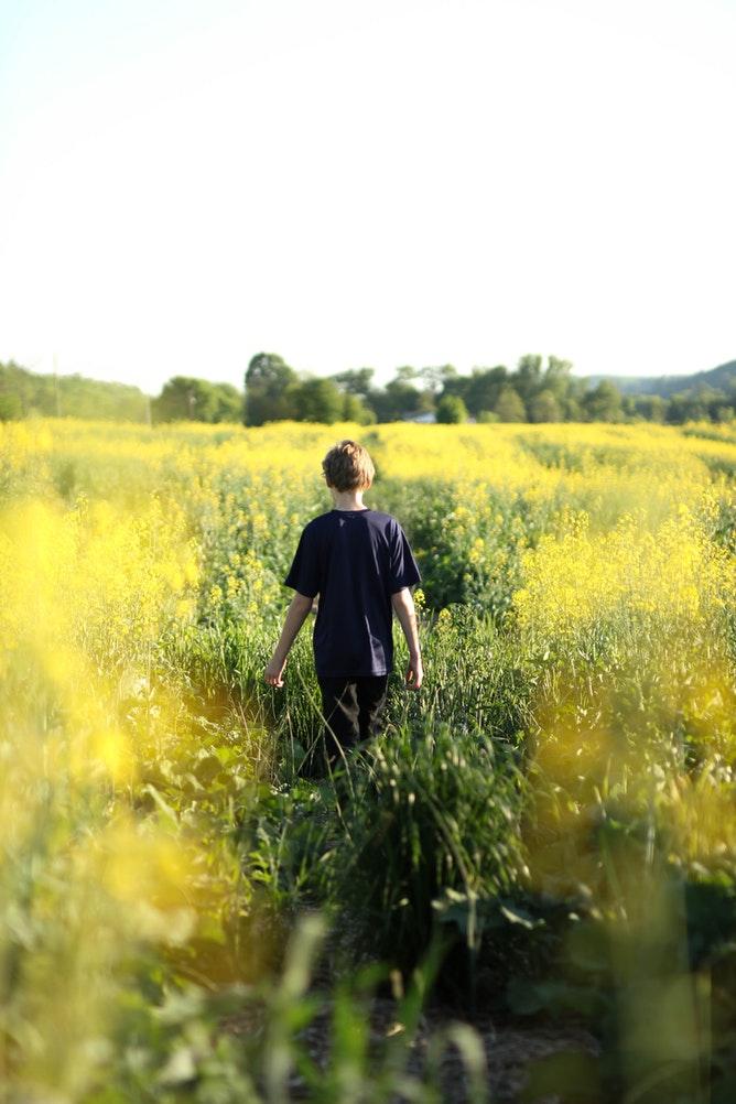 música para los niños, para liberar estrés, granja escuela albitana