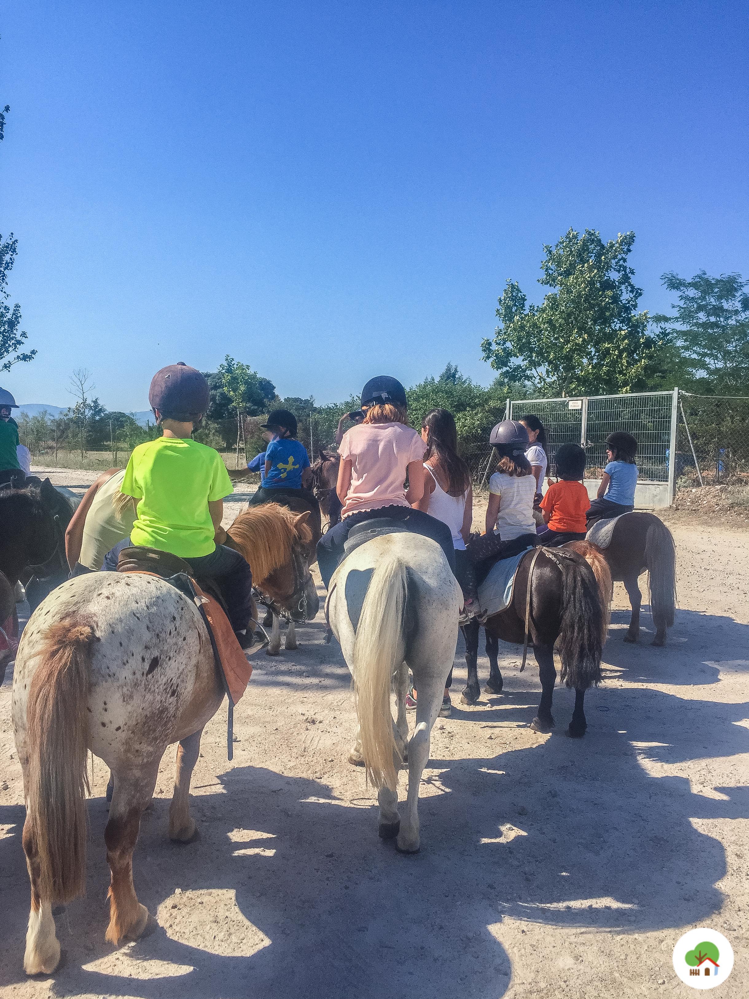 niños de ruta a caballo en campamento albitana madrid